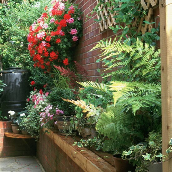 Planting In A Narrow Alleyway Housetohome Co Uk