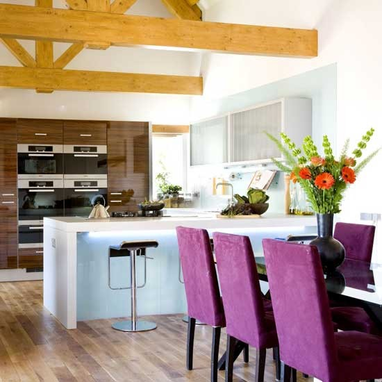 Professional Kitchen-dining Area