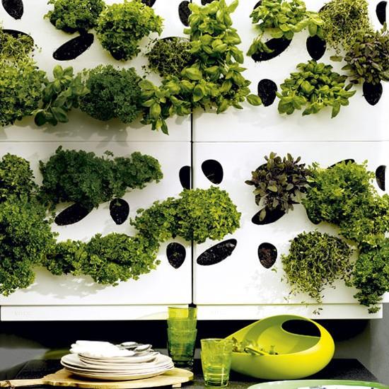 Easy Garden Transformations