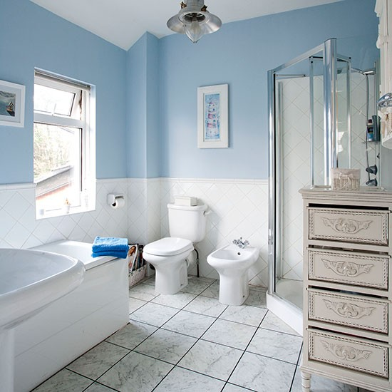 Pale Blue And White Traditional-style Bathroom